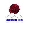 anjersdenijs logo